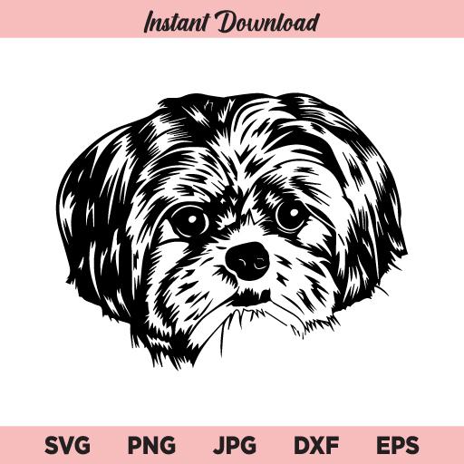 Shih Tzu Dog SVG, PNG, DXF, Cricut, Cut File, Clipart, Silhouette